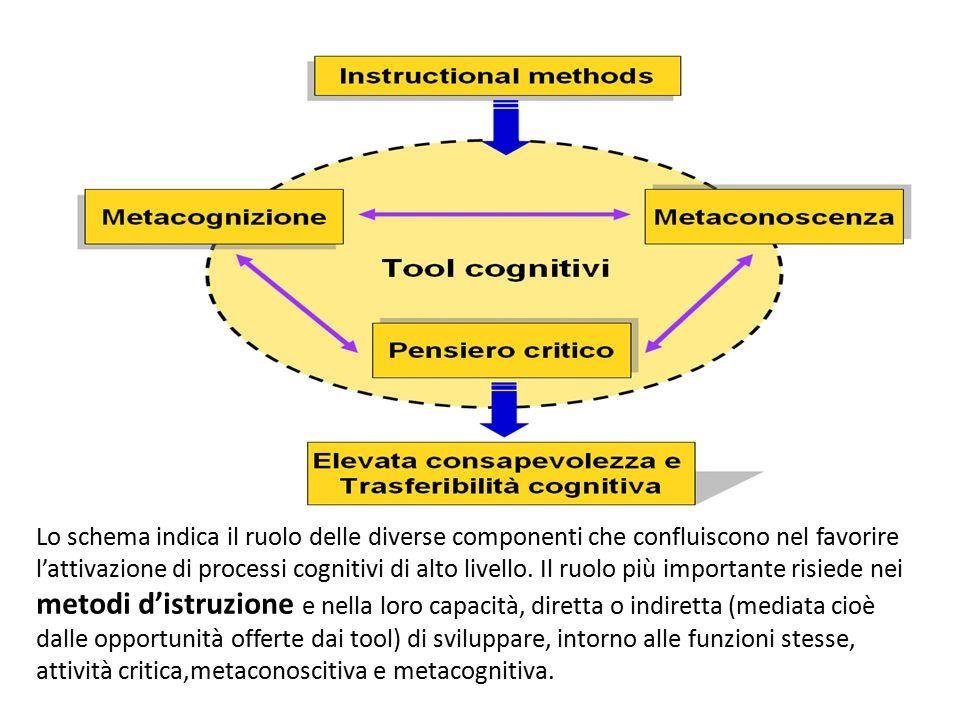 Lo schema indica il ruolo delle diverse componenti che confluiscono nel favorire