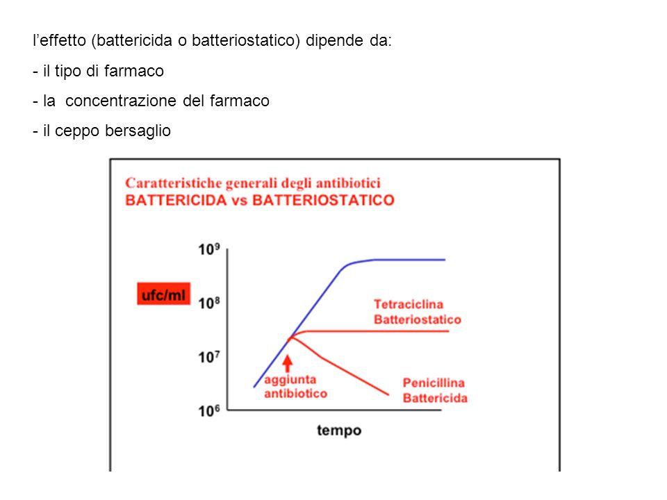 l'effetto (battericida o batteriostatico) dipende da: