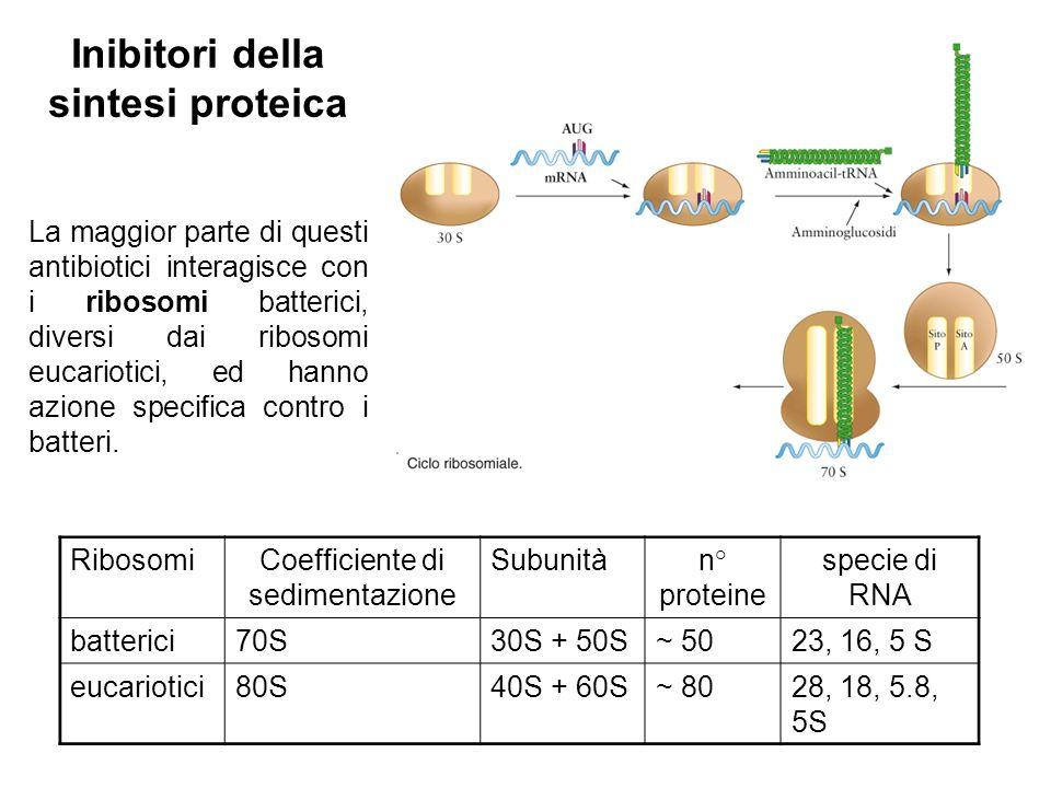 Inibitori della sintesi proteica