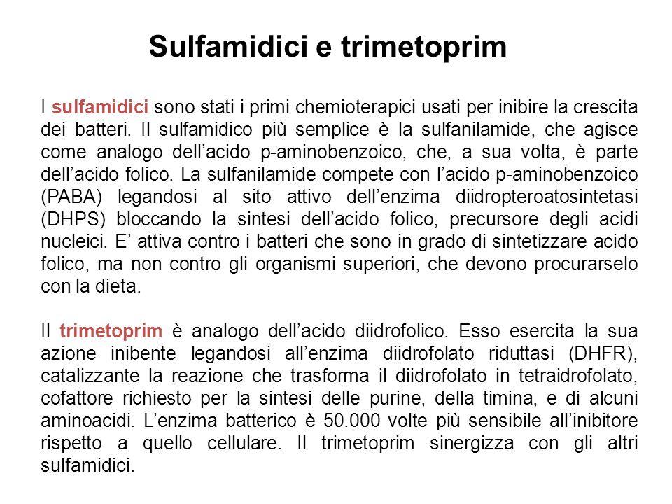 Sulfamidici e trimetoprim