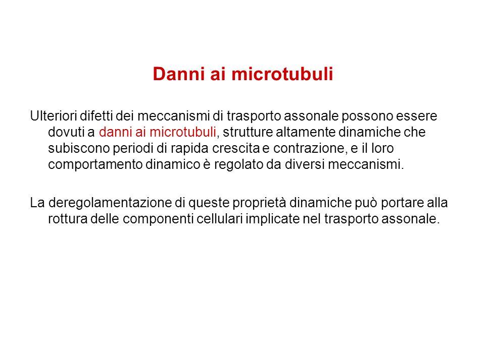 Danni ai microtubuli