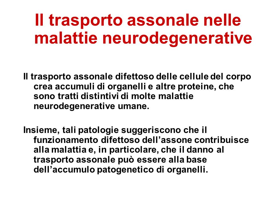 Il trasporto assonale nelle malattie neurodegenerative