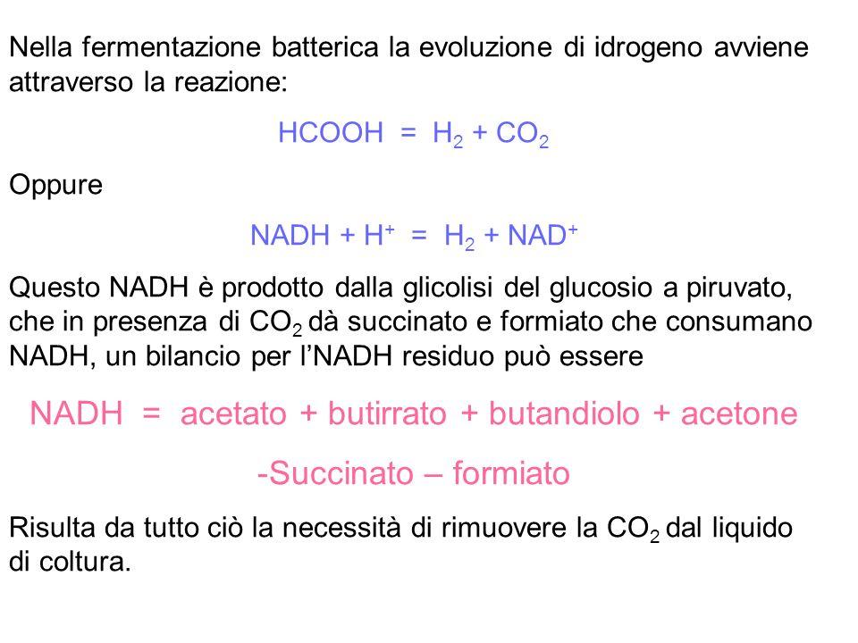 NADH = acetato + butirrato + butandiolo + acetone