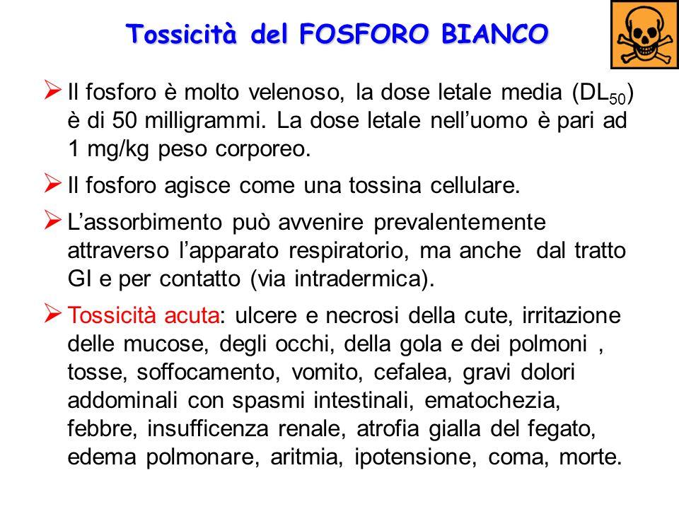 Tossicità del FOSFORO BIANCO