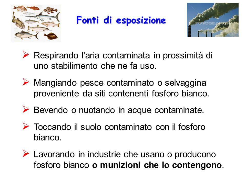 Fonti di esposizione Respirando l aria contaminata in prossimità di uno stabilimento che ne fa uso.