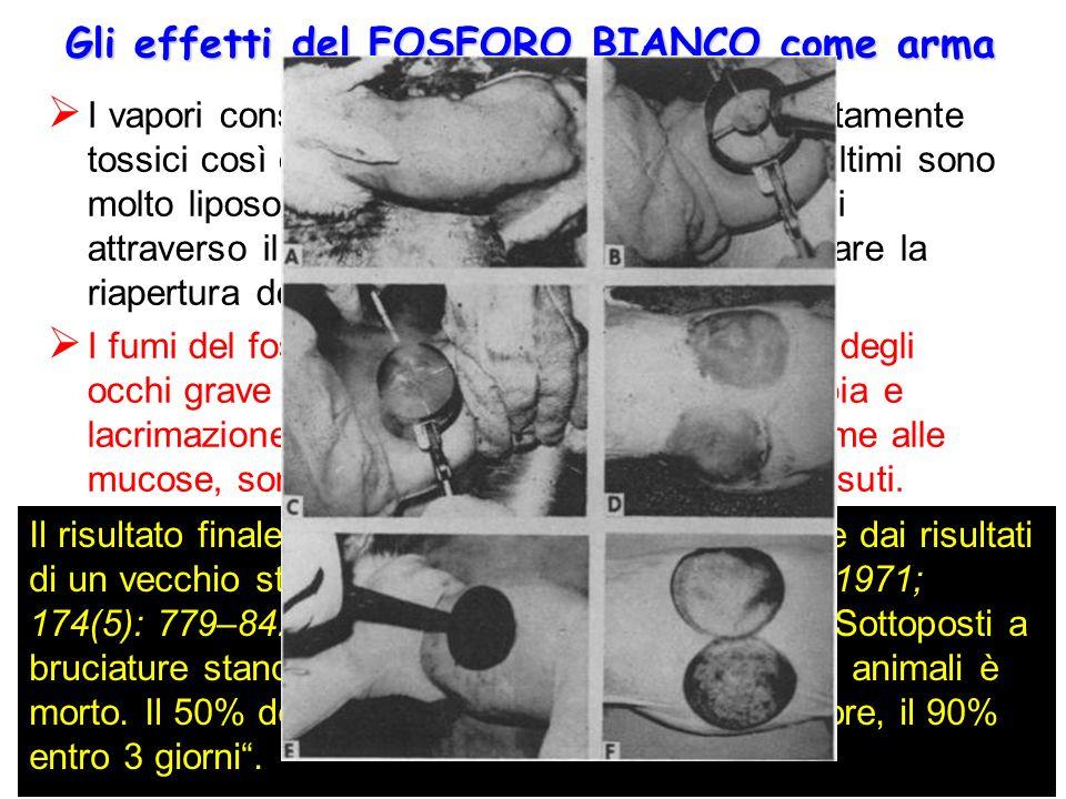 Gli effetti del FOSFORO BIANCO come arma