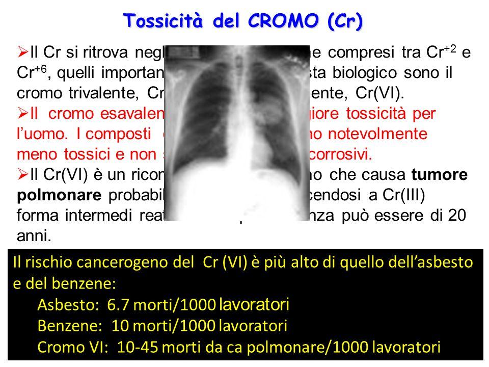 Tossicità del CROMO (Cr)