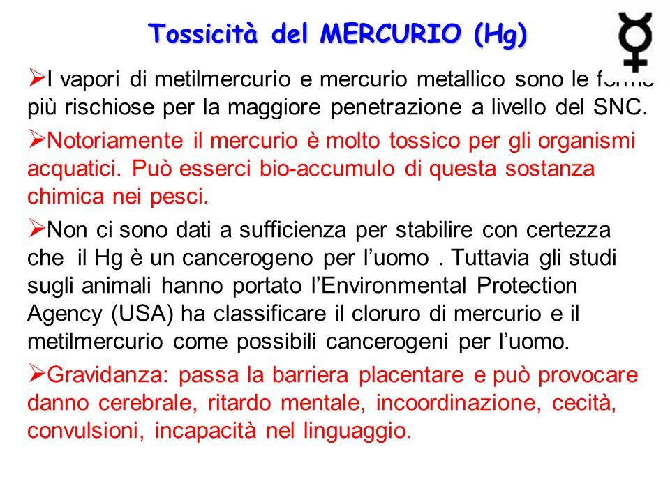 Tossicità del MERCURIO (Hg)