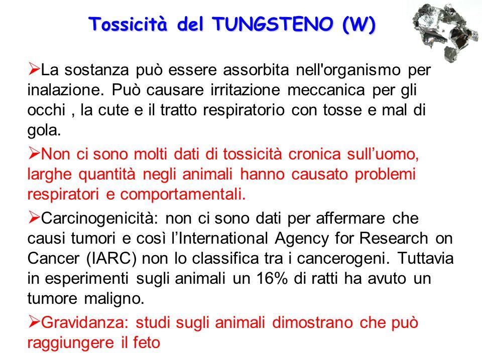 Tossicità del TUNGSTENO (W)