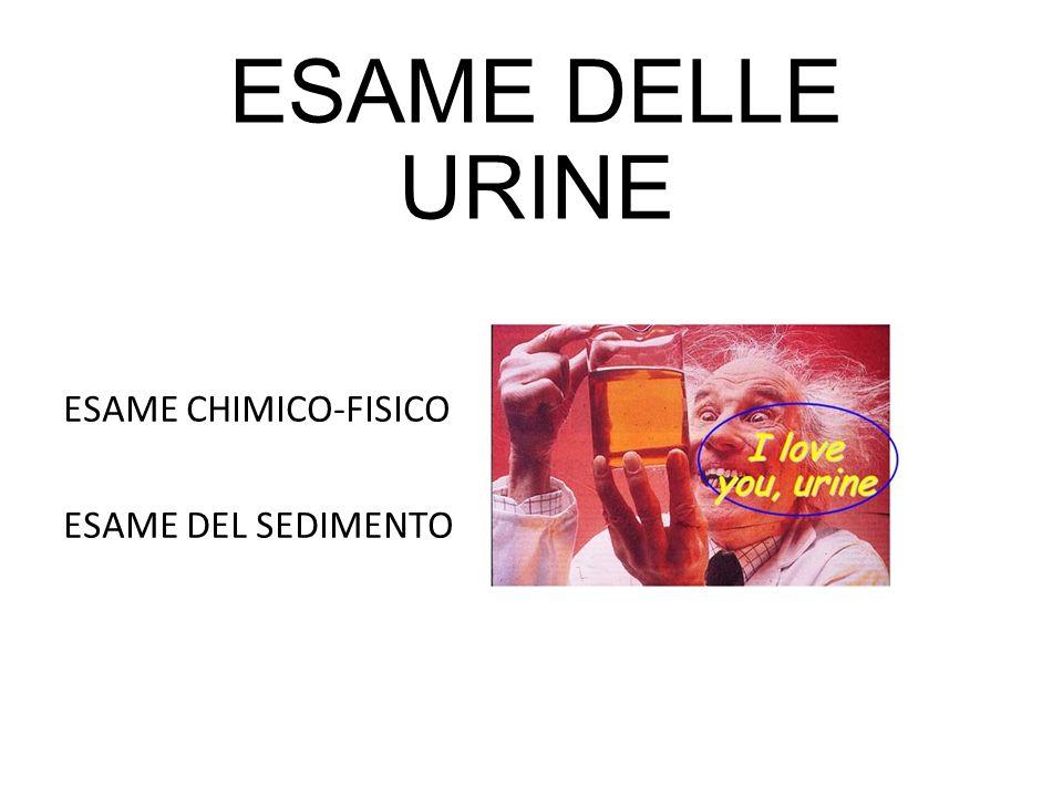 ESAME CHIMICO-FISICO ESAME DEL SEDIMENTO