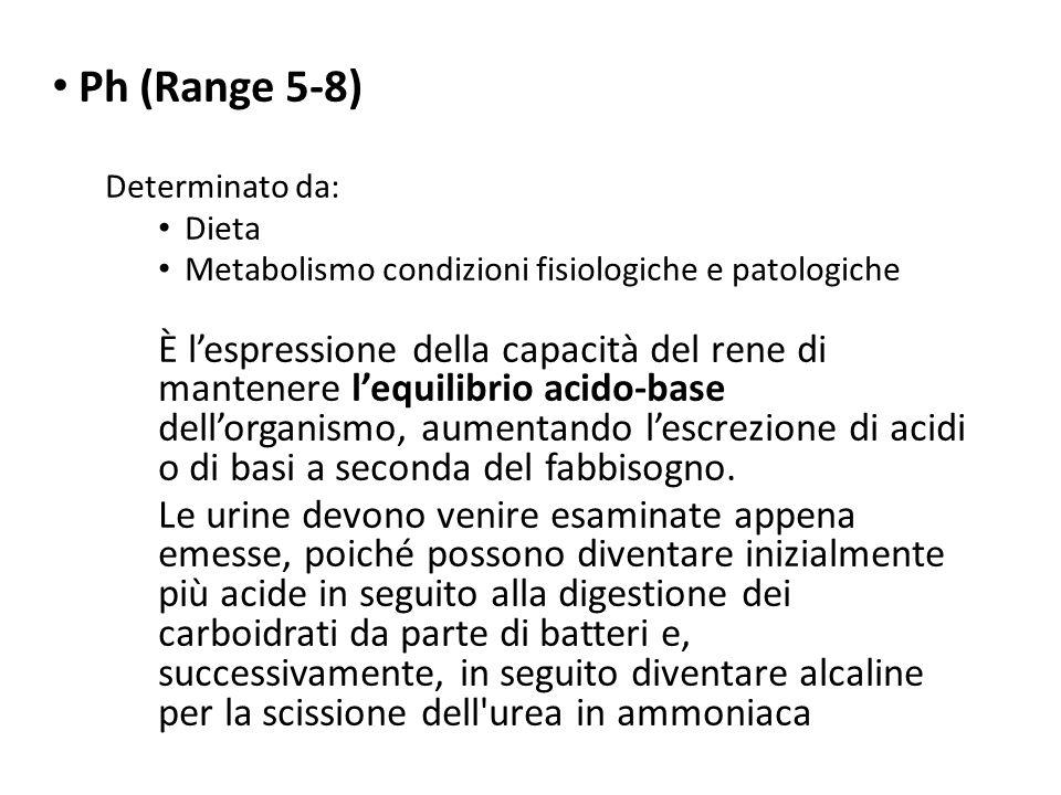 Ph (Range 5-8) Determinato da: Dieta. Metabolismo condizioni fisiologiche e patologiche.