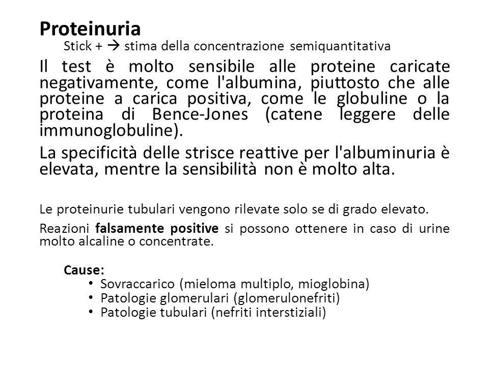 Proteinuria Stick +  stima della concentrazione semiquantitativa.