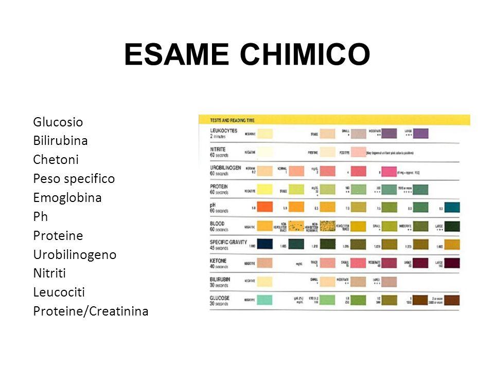 ESAME CHIMICO Glucosio Bilirubina Chetoni Peso specifico Emoglobina Ph