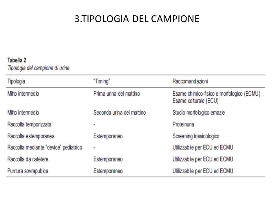 3.TIPOLOGIA DEL CAMPIONE