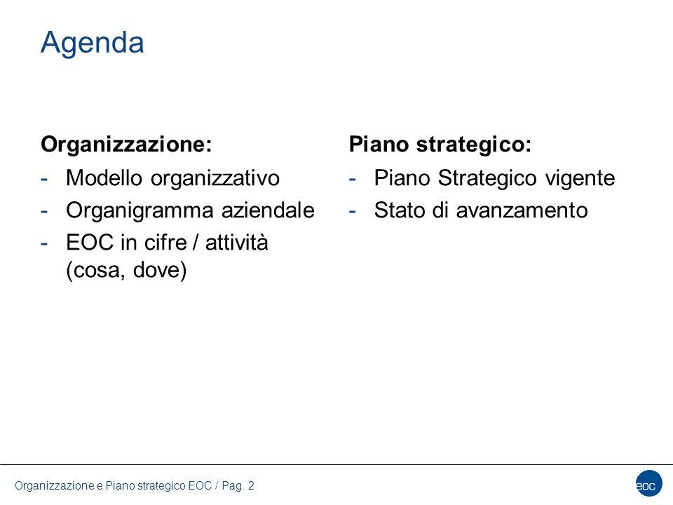 Agenda Organizzazione: Piano strategico: Modello organizzativo