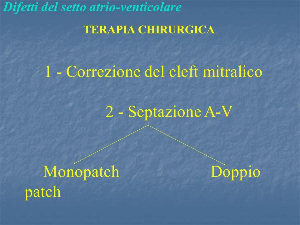 1 - Correzione del cleft mitralico