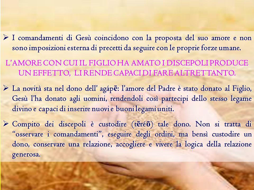 I comandamenti di Gesù coincidono con la proposta del suo amore e non sono imposizioni esterna di precetti da seguire con le proprie forze umane.