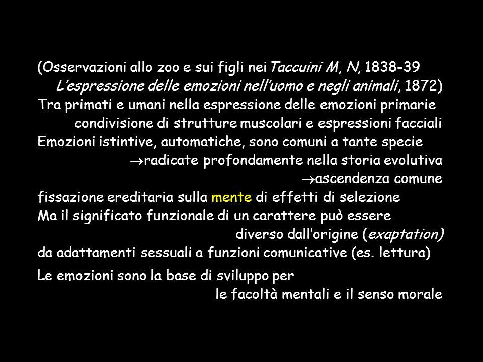 (Osservazioni allo zoo e sui figli neiTaccuini M, N, 1838-39