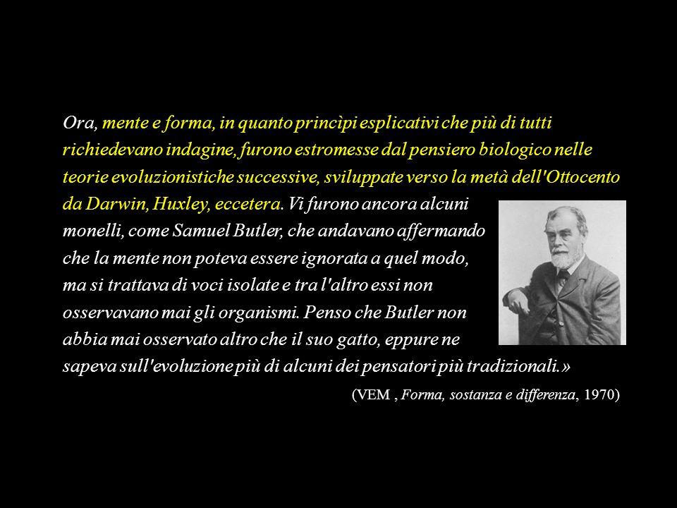 Ora, mente e forma, in quanto princìpi esplicativi che più di tutti richiedevano indagine, furono estromesse dal pensiero biologico nelle teorie evoluzionistiche successive, sviluppate verso la metà dell Ottocento da Darwin, Huxley, eccetera. Vi furono ancora alcuni