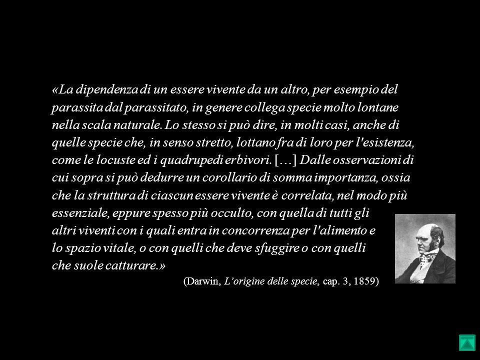 (Darwin, L'origine delle specie, cap. 3, 1859)