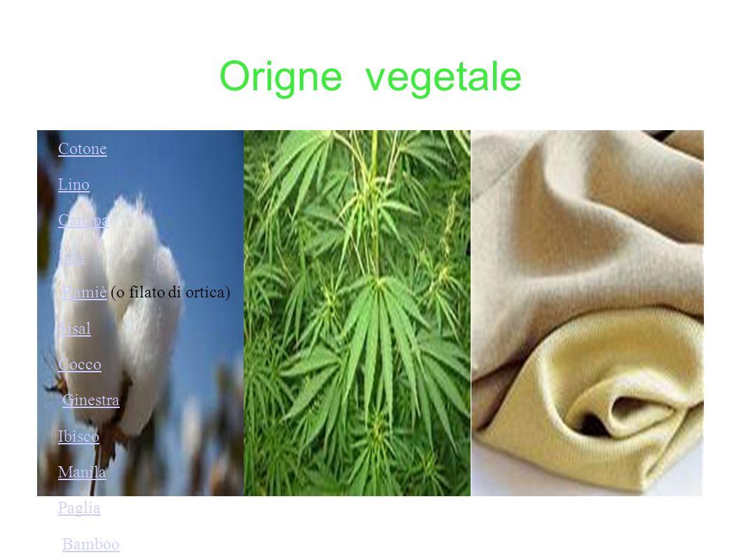 Origne vegetale Cotone Lino Canapa Iuta Ramiè (o filato di ortica)