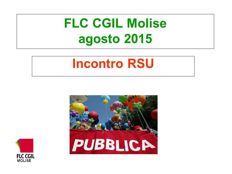 FLC CGIL Molise agosto 2015 Incontro RSU