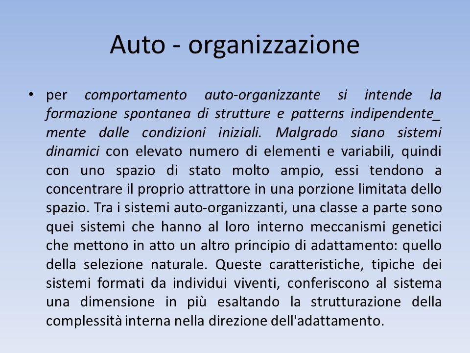 Auto - organizzazione