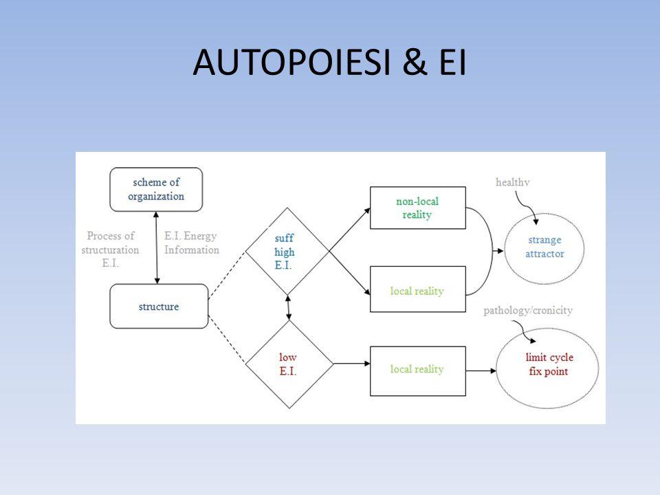 AUTOPOIESI & EI