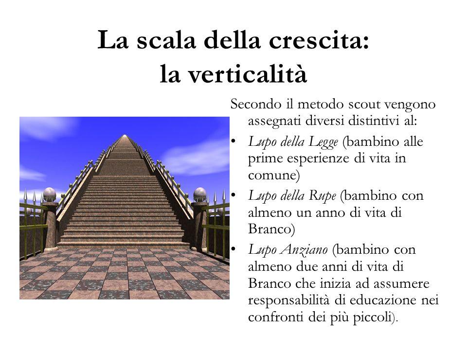 La scala della crescita: la verticalità