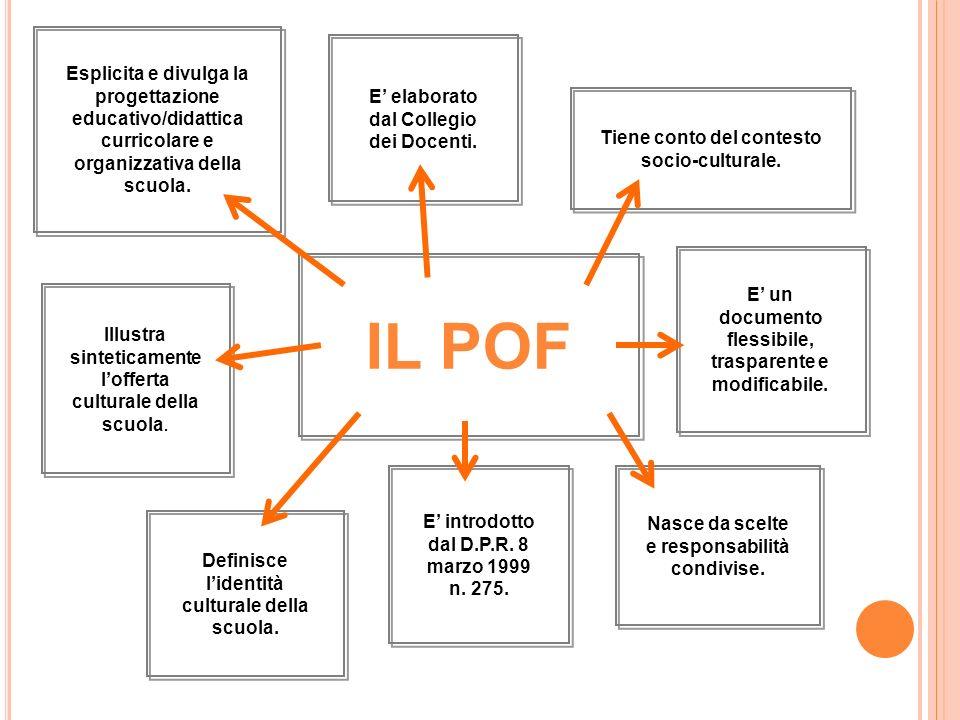 Esplicita e divulga la progettazione educativo/didattica curricolare e organizzativa della scuola.