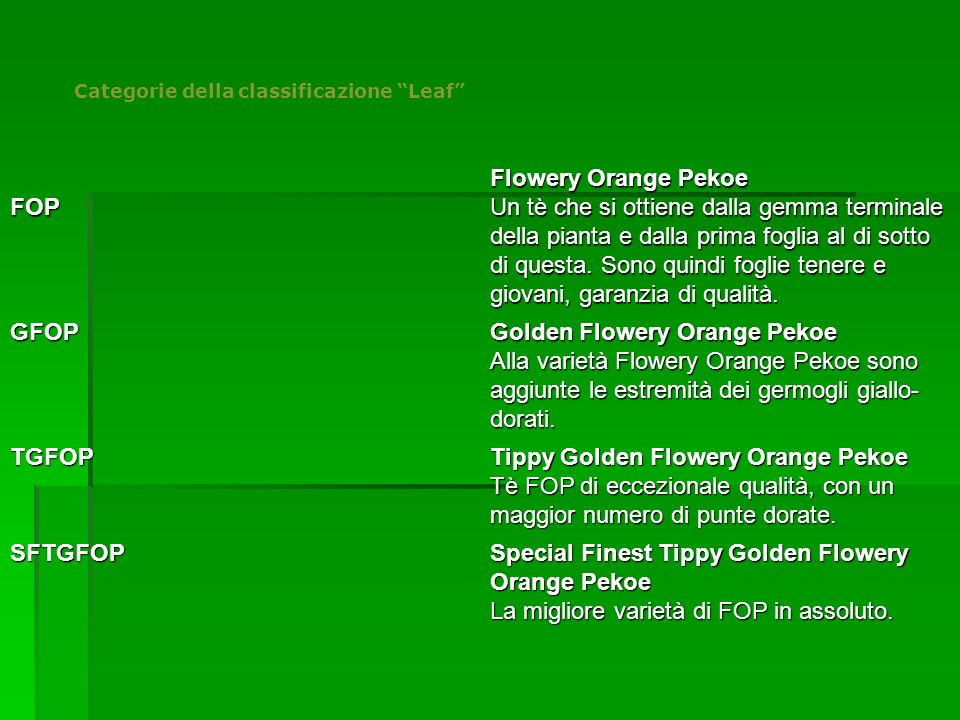 Categorie della classificazione Leaf