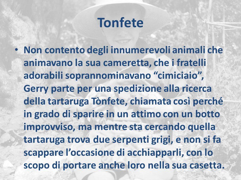 Tonfete