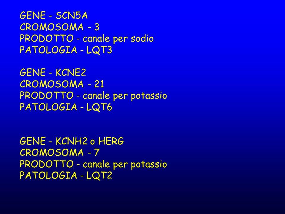 GENE - SCN5A CROMOSOMA - 3 PRODOTTO - canale per sodio PATOLOGIA - LQT3 GENE - KCNE2 CROMOSOMA - 21 PRODOTTO - canale per potassio PATOLOGIA - LQT6