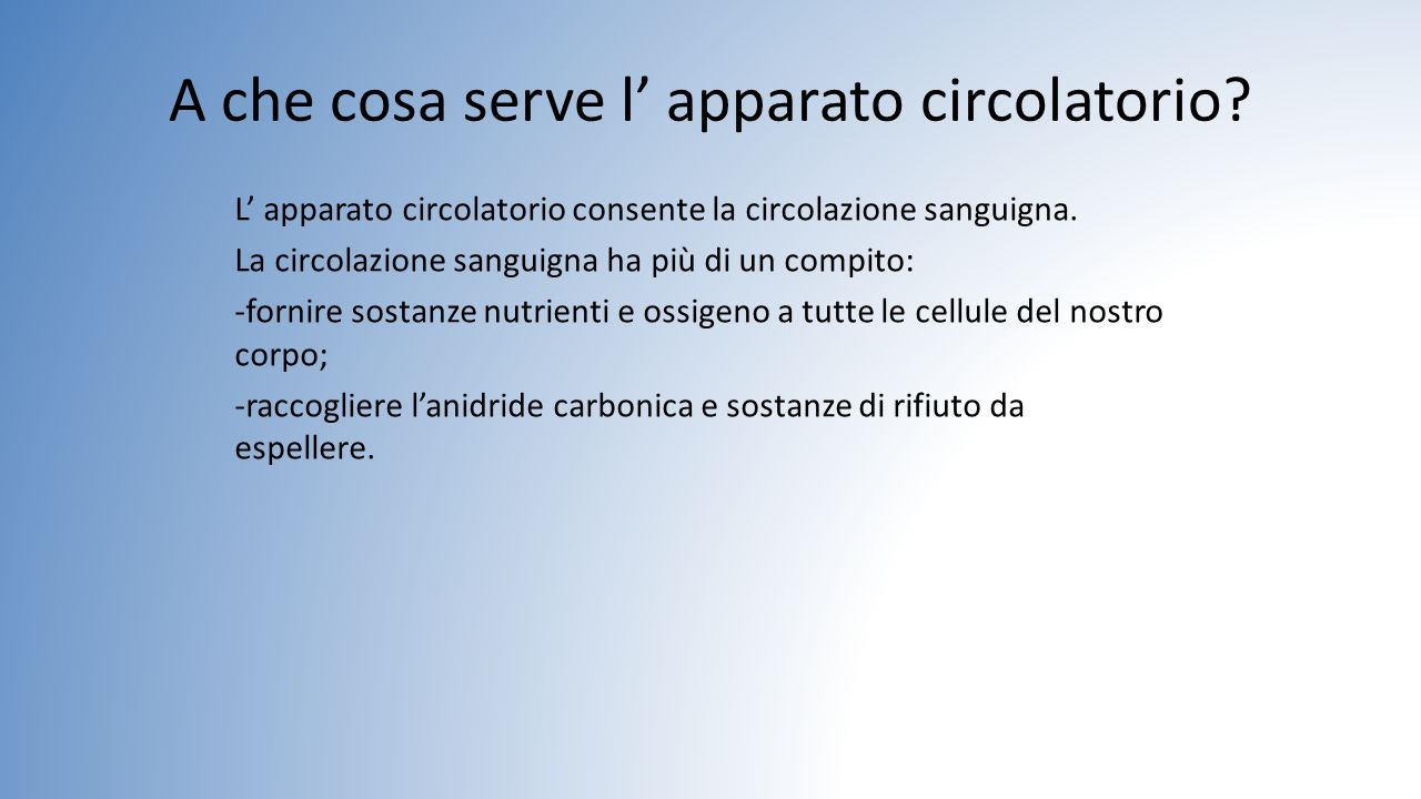 A che cosa serve l' apparato circolatorio