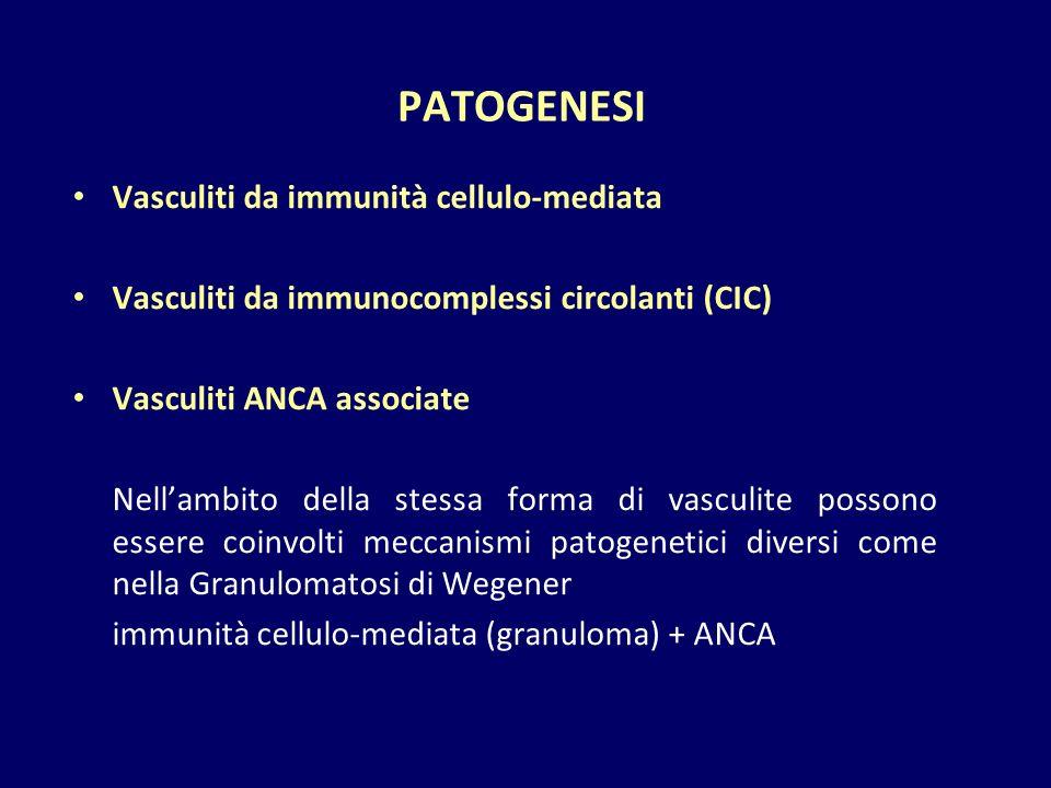 PATOGENESI Vasculiti da immunità cellulo-mediata
