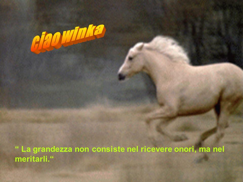 ciao winka La grandezza non consiste nel ricevere onori, ma nel meritarli.