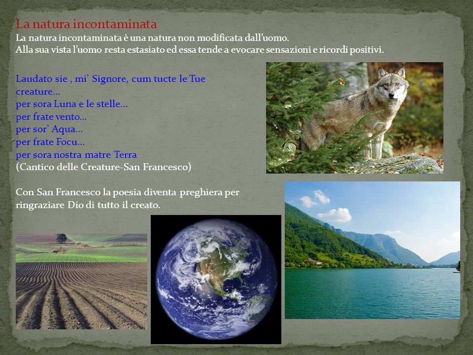 La natura incontaminata