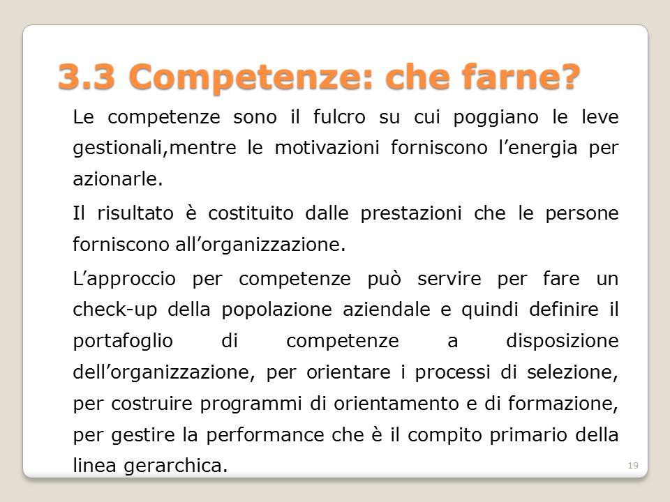 3.3 Competenze: che farne