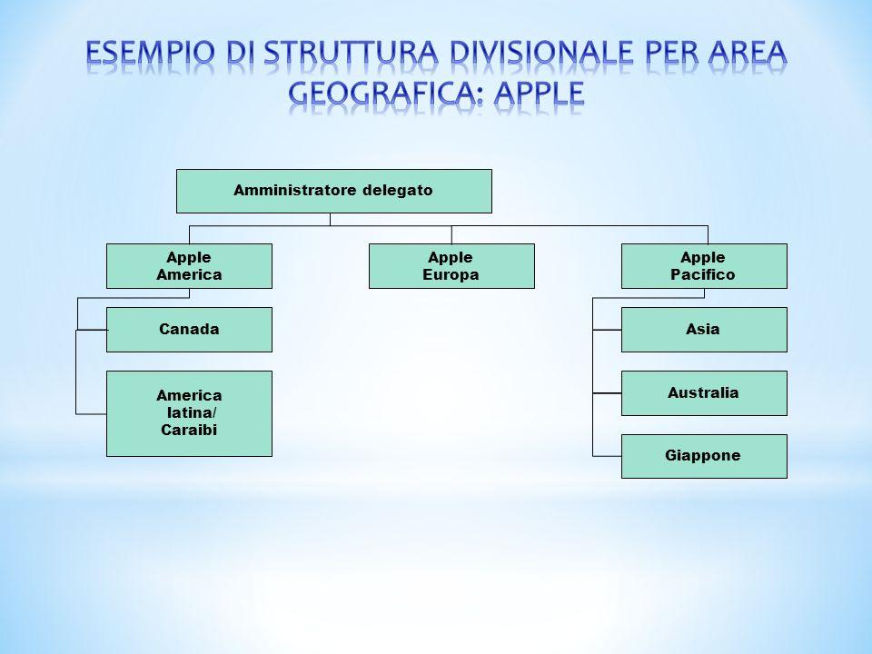 ESEMPIO DI STRUTTURA DIVISIONALE PER AREA GEOGRAFICA: APPLE