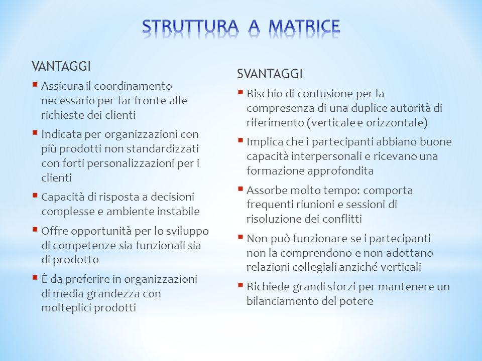 STRUTTURA A MATRICE VANTAGGI SVANTAGGI