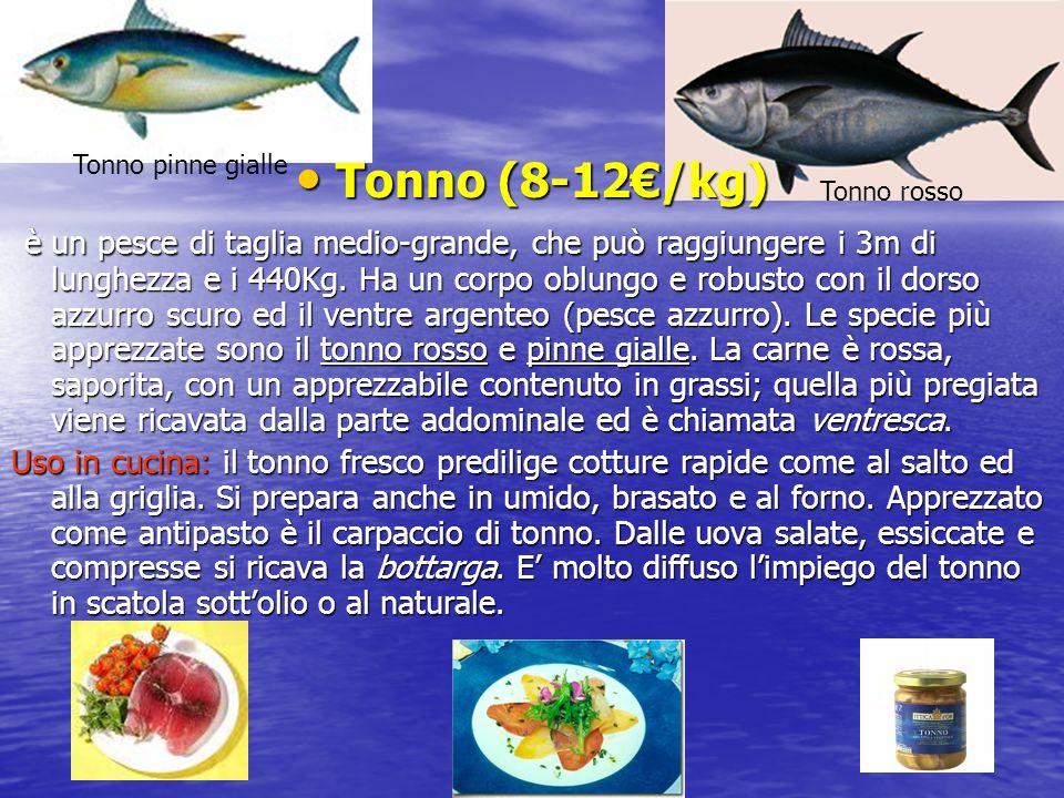Tonno pinne gialle Tonno (8-12€/kg)