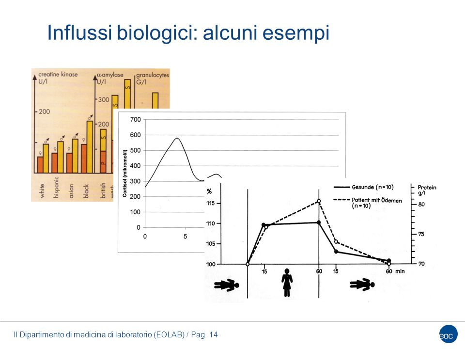 Influssi biologici: alcuni esempi