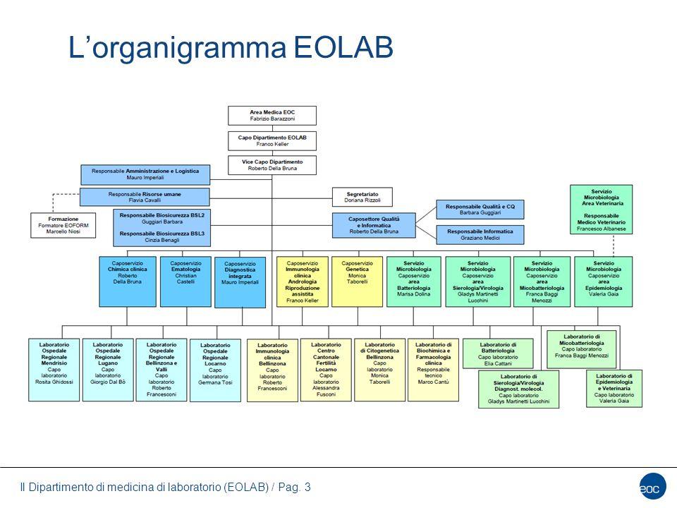 L'organigramma EOLAB