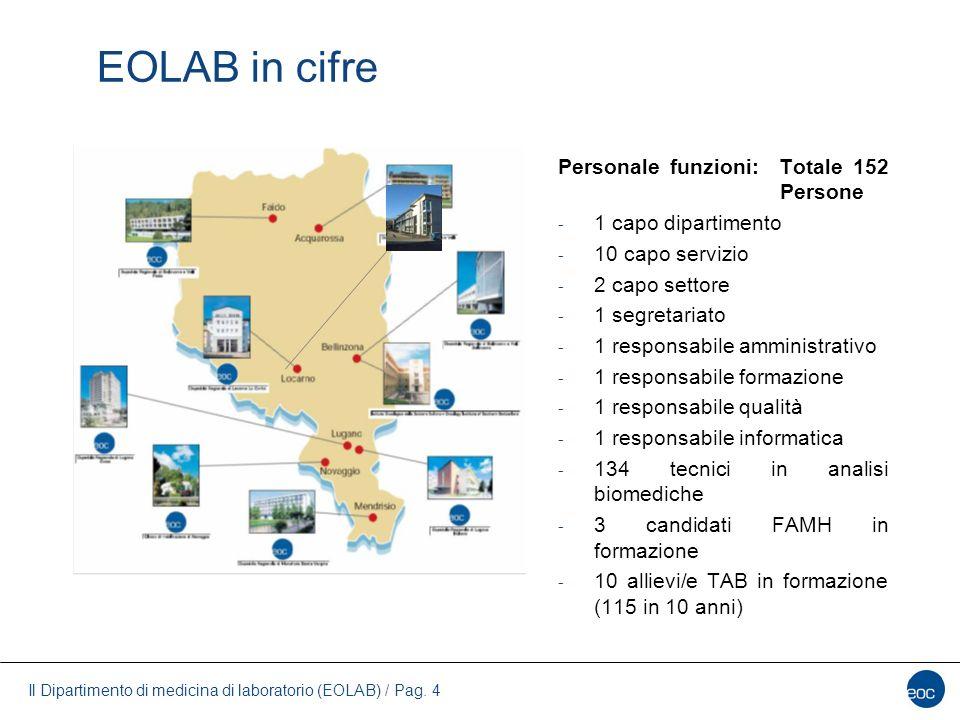 EOLAB in cifre Personale funzioni: Totale 152 Persone