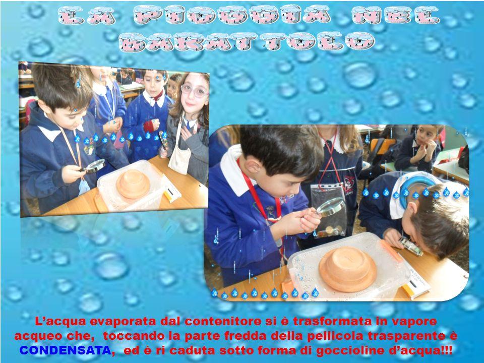 L'acqua evaporata dal contenitore si è trasformata in vapore acqueo che, toccando la parte fredda della pellicola trasparente è CONDENSATA, ed è ri caduta sotto forma di goccioline d'acqua!!!