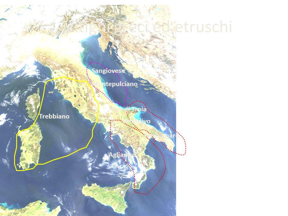 Vitigni greci ed etruschi