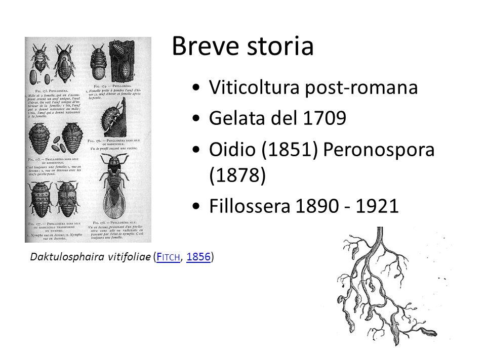 Breve storia Viticoltura post-romana Gelata del 1709