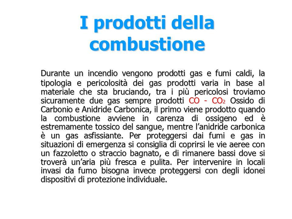 I prodotti della combustione