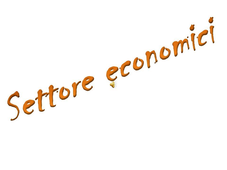 Settore economici