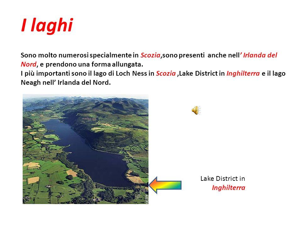 I laghi Sono molto numerosi specialmente in Scozia,sono presenti anche nell' Irlanda del Nord, e prendono una forma allungata.